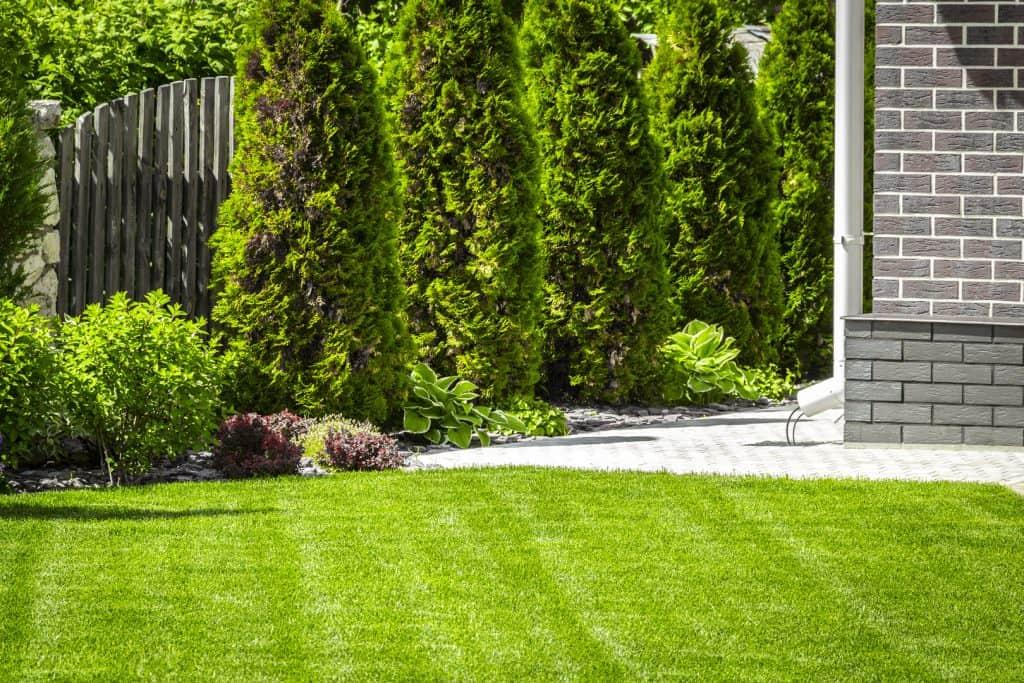 montgomery landscaping